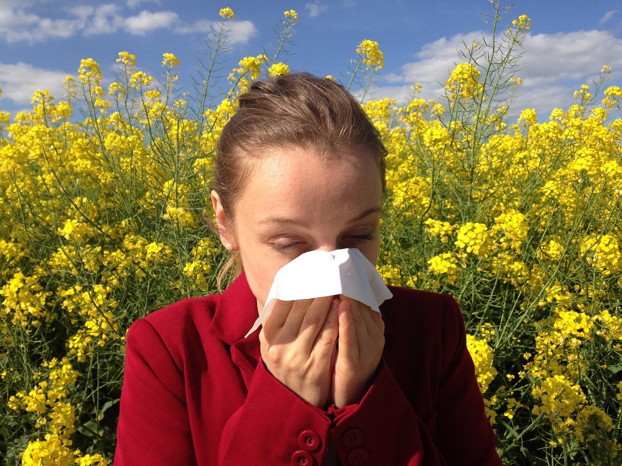 Zmora alergików – co pyli w lipcu?
